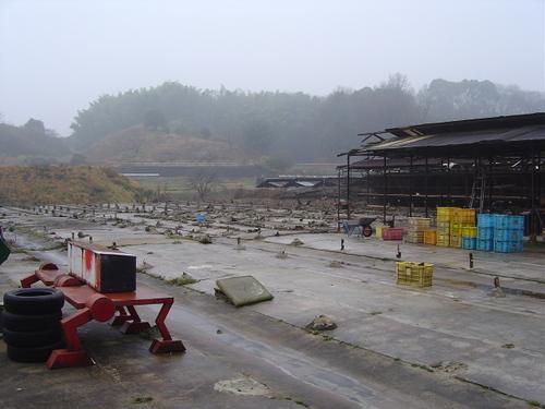 2007_1_006